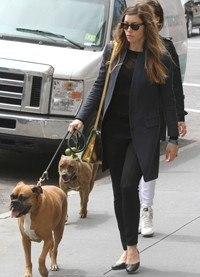 Jessica Biel con look casual pasea a su perra Tina en Nueva York